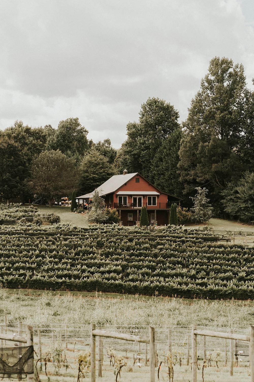 ceremony venue vineyard