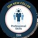 New+Collar+Professional+Skills.png