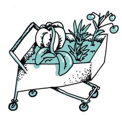 Kaufe regionale und saisonale Bio-Nahrungsmittel. Wasche Obst und Gemüse vor Verzehr sorgfältig mit warmem Wasser.