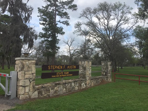 SFA- State Park