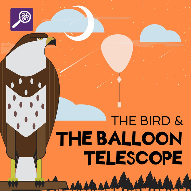 The Bird and The Balloon Telescope
