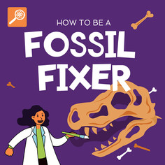 How To Be A Fossil Fixer