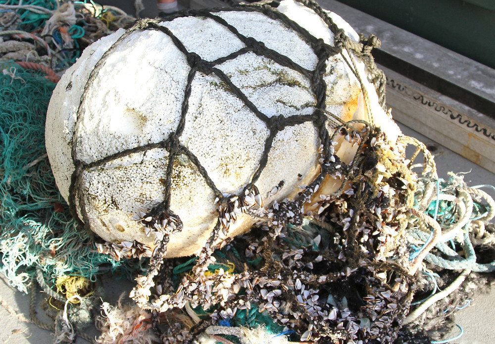 Nets and floats from the garbage patch