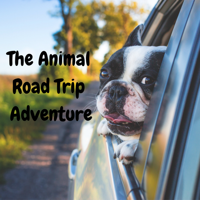 The Animal Road Trip Adventure