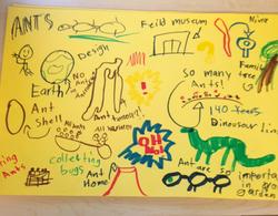 From Ms Xenos' third grade