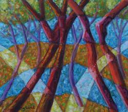 bomen / trees