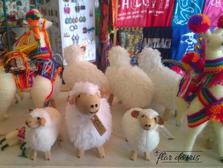 Onde comprar lã em Santiago (Chile)