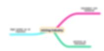 conceptual framework.png