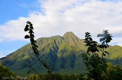 Le Volcan Sabyiyo, Rwanda