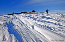 Mont du lac des Cygnes, Qc