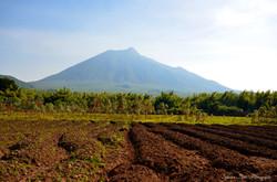 Volcan Sabyinyo, Rwanda