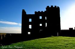 Shanes Castle, Irelande du Nord