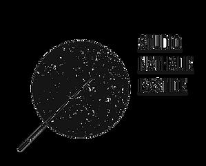 Logo SNB.png