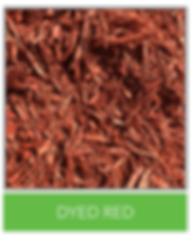 DYED RED.png