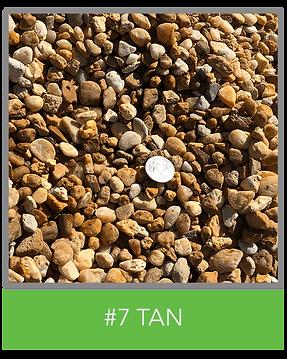 #7TAN.png