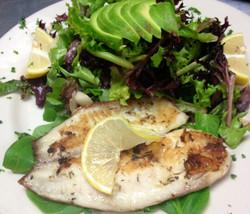 Grilled tilapia salad