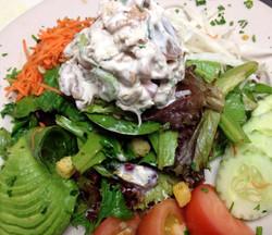 sonoma  chicken salad on baby greens