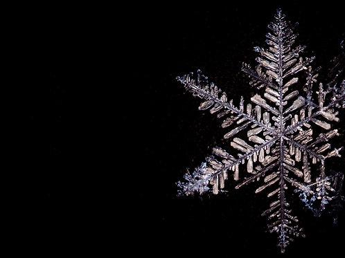 Holiday Card - Snowflake