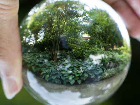 Seeing the world through a lens ball - right side up!
