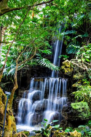 Graceful Waterfall