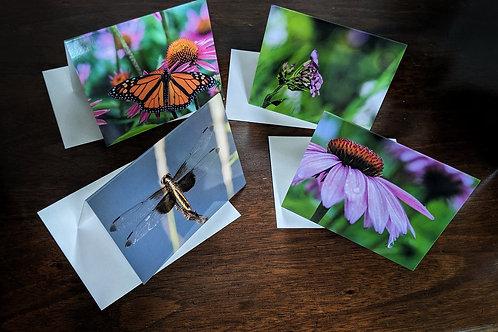 Summer 2019 Notecards - Set of 4
