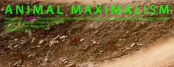 GreenKill_Animax_AD_Dirt Boy