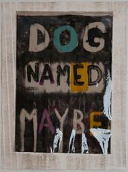 Dog Named Maybe