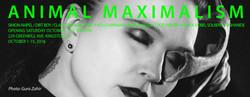 Animal Maximalism at Green Kill Ad