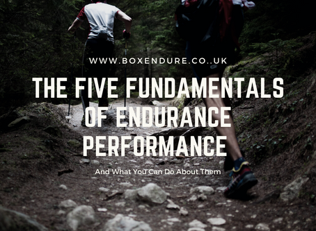 The Five Fundamentals Of Endurance Performance -  And what can you do about them.