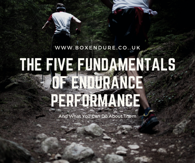 The Five Fundamentals Of Endurance Performance