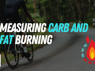 Measuring carbohydrate and fat burning rates during exercise
