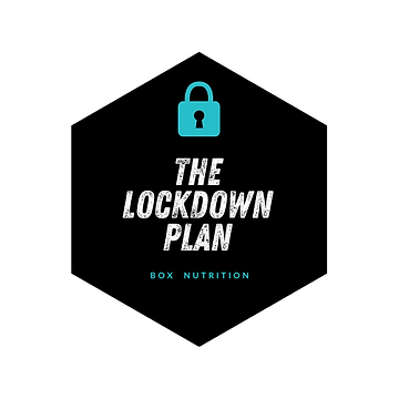 The lockdown plan.png