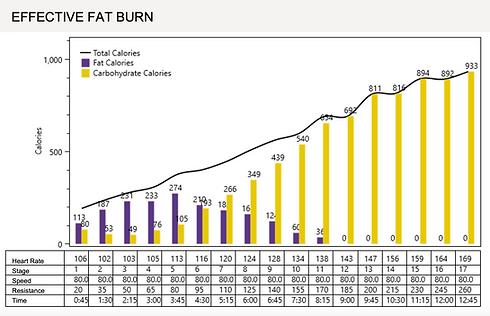 Fat burn