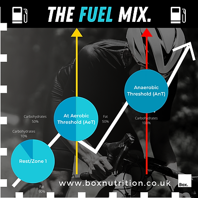 The Fuel Mix. (2).png
