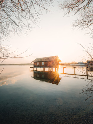 Ammersee branches-1.jpg