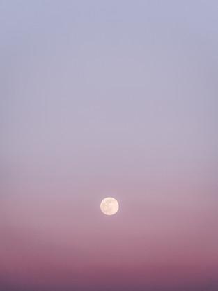 Pink Moon-1.jpg