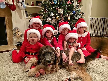 Children dressed as elves and their dog
