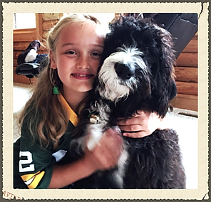 Bernedoodle and little girl hug