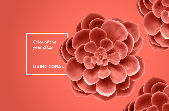 """Living Coral"" die Farbe des Jahres 2019"