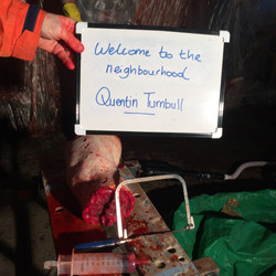 049 Quentin Turnbull.jpg