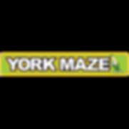 york-maze.png