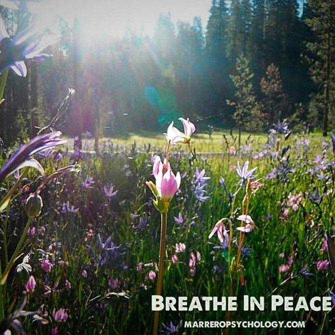 Quick Tip: Breathe in Peace