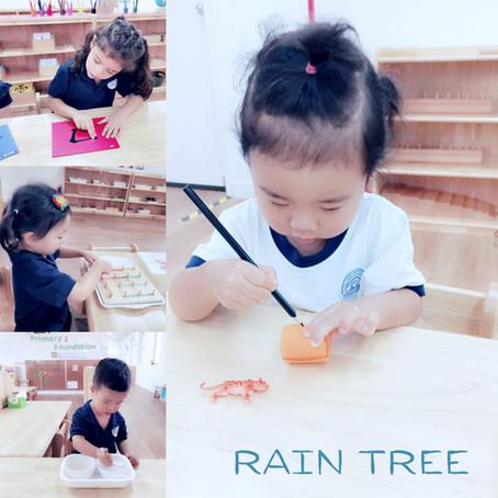 Traditional Preschools vs Montessori Approach
