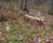 Speed River PhD intermittne site.jpg
