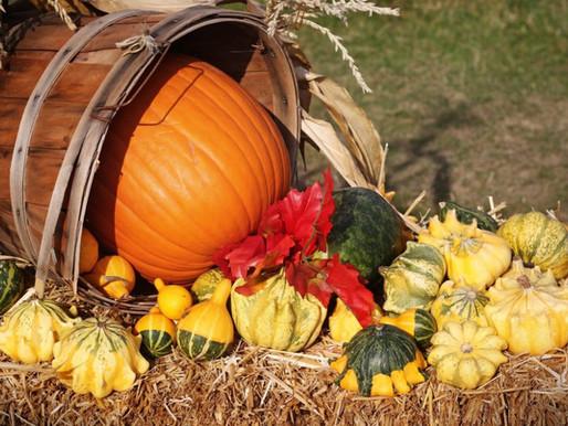 Fall Writing: Prepare for a Successful Season