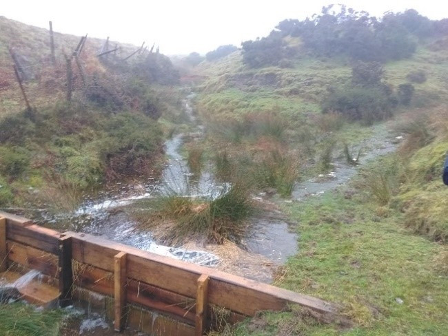 Wooden leaky dam in operation