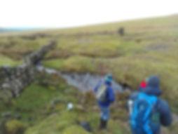 Tin mining gullies.jpg