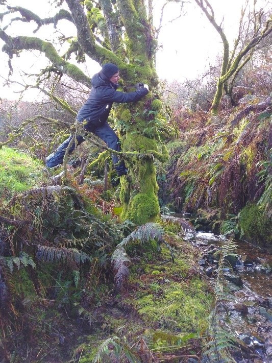 Putting up trail cameras to monitor water flow