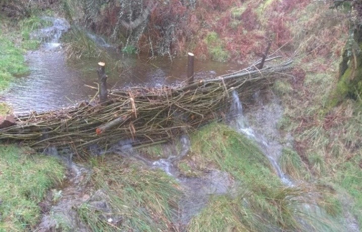 Willow faggot dam in operation