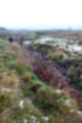 Exmoor visit 3.jpg